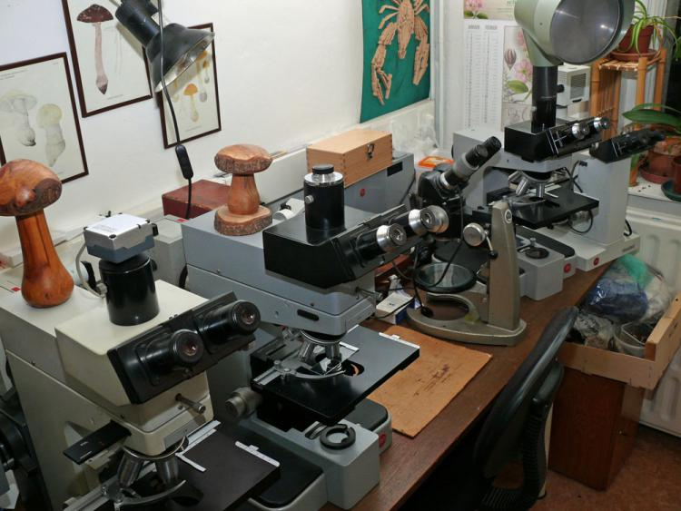 Microscopes.jpg