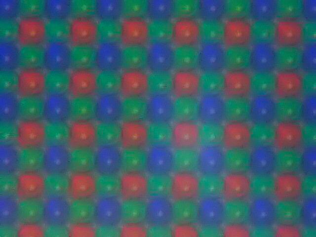 Bayer 15-9-2004.jpg