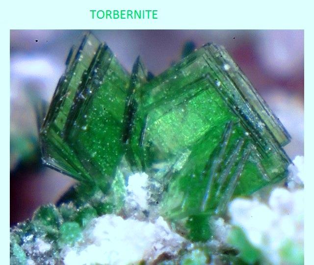 torbernite2-lpi - 2.jpg
