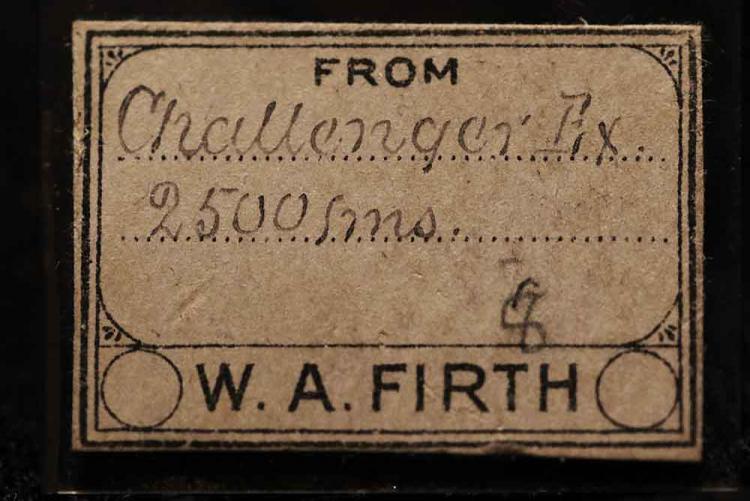 FW6A3818.JPG