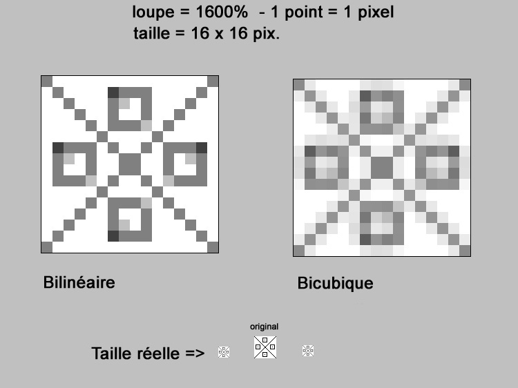 test_2_redim.jpg