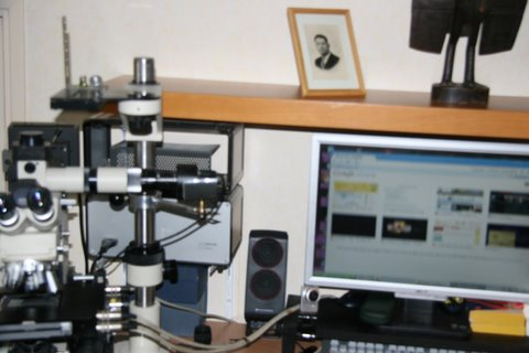 mon coin bureau microscope 003.jpg