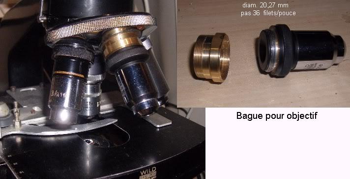 bagueob.jpg