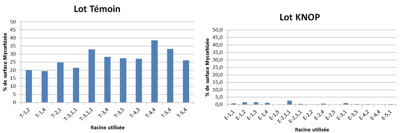 Graph1et2.jpg