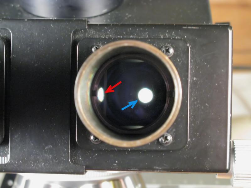 100601_Flare dans tête trino - tube droit.jpg