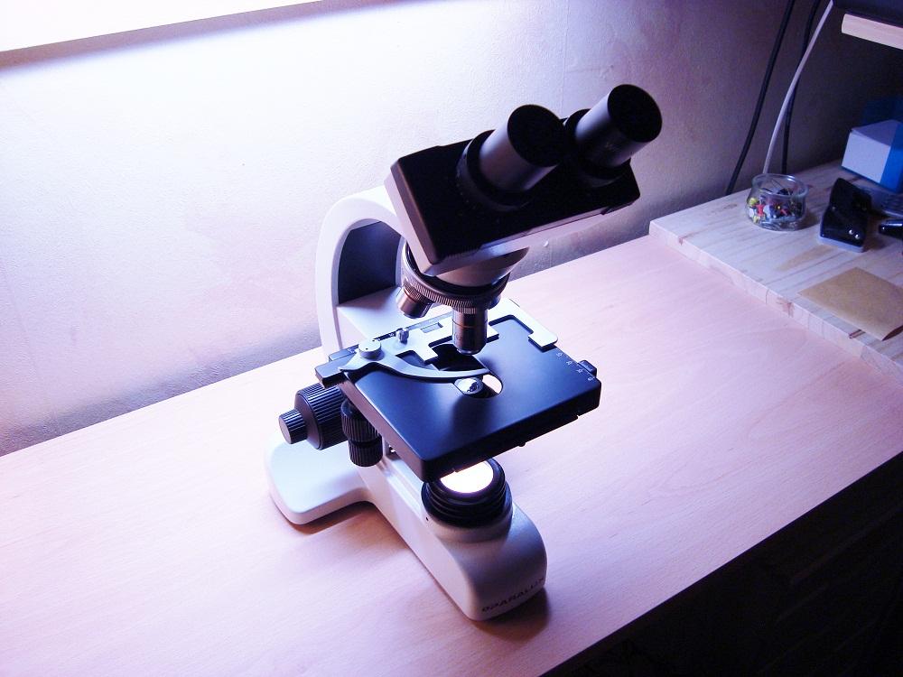 microscope paralux 001+.jpg