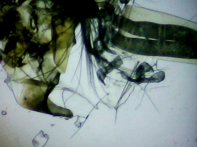 2-detail_80x.jpg
