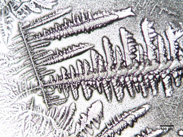 Liquide pré-éjaculatoire 2 x100.jpg