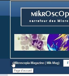 2018-09-07 09_11_57-Forum Mikroscopia.png