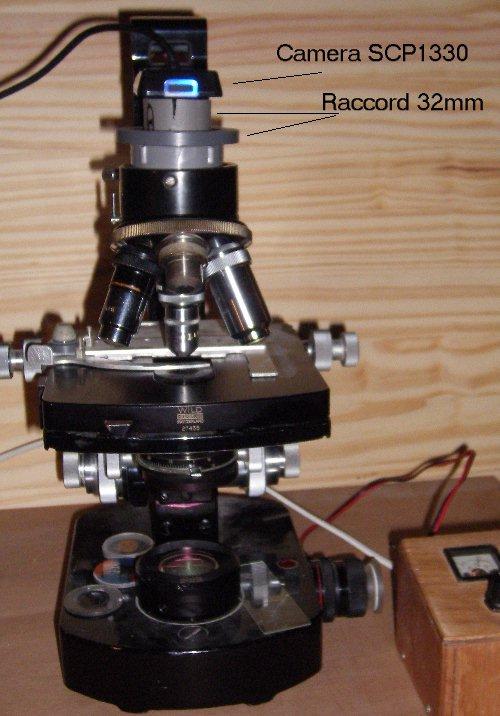 IMGP2452.JPG