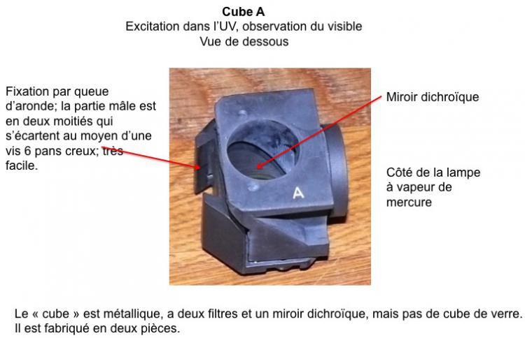 Cube 1.jpg