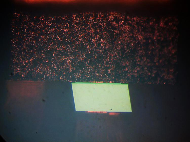 Diode laser 16x.jpg