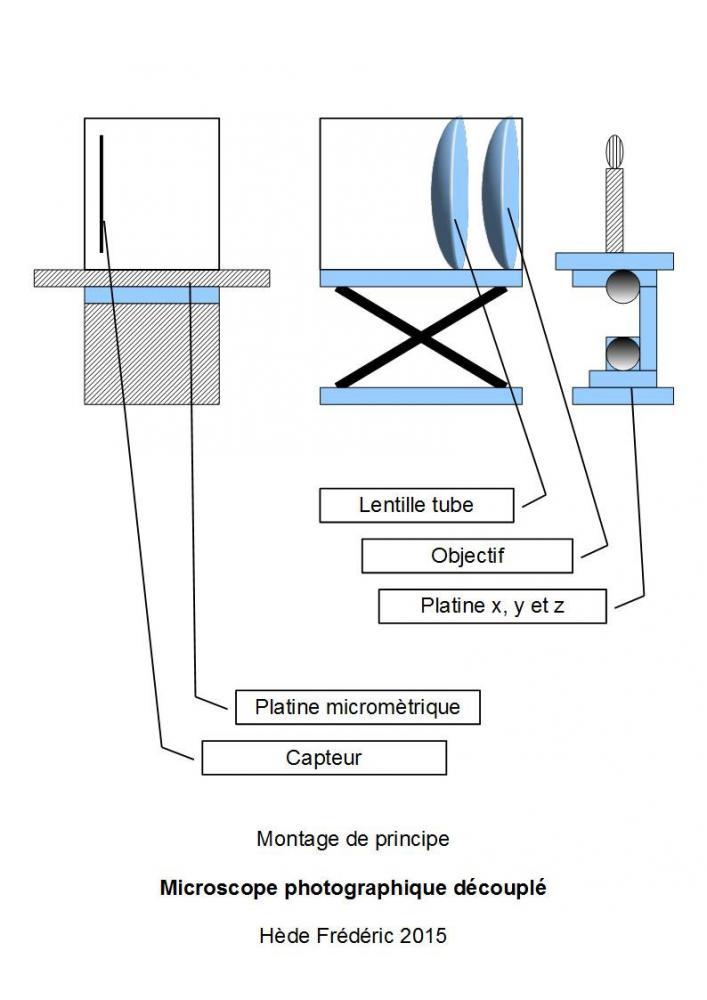 HF1.jpg