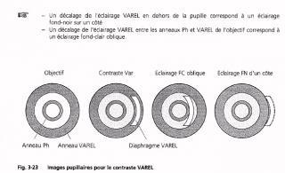 VAREL.jpg